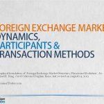 Forex Market Participants Dynamics and Transaction Methods